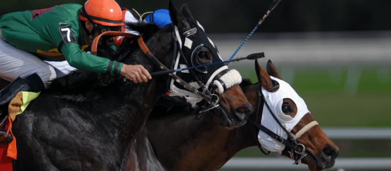 Royal Ascot paardenraces: Zo heurt het!
